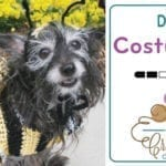 4 Crochet Dog Halloween Costumes