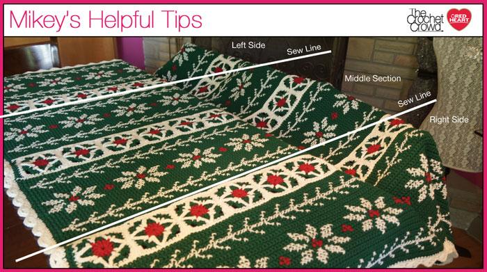 Poinsettia Crochet Throw Advice