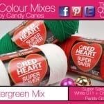 Try Wintergreen Colours