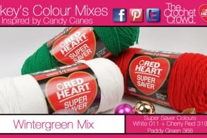 Wintergreen Colour Yarn.