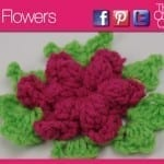 Forever Flowers Pattern + Tutorial