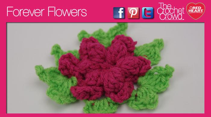 Forever Crochet Flowers