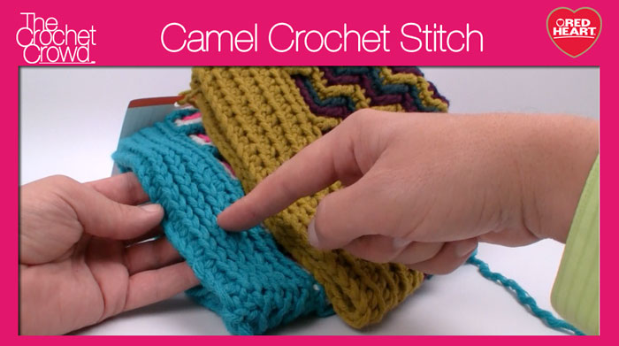 Crochet Camel Stitch + Video Tutorial - The Crochet Crowd