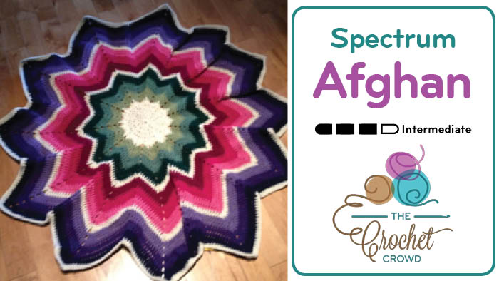 Crochet 12 Point Spectrum Afghan | The Crochet Crowd
