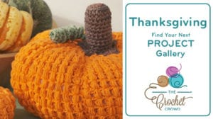 Crochet Thanksgiving Project Gallery