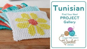 Crochet Tunisian Projects Gallery