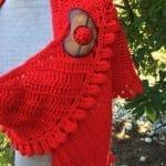 Crochet Slice of Nice Shawl