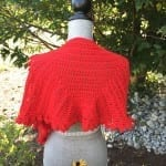 Crochet Slice of Nice Shawl
