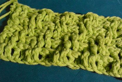 Lemon Lime Textured Dishcloth
