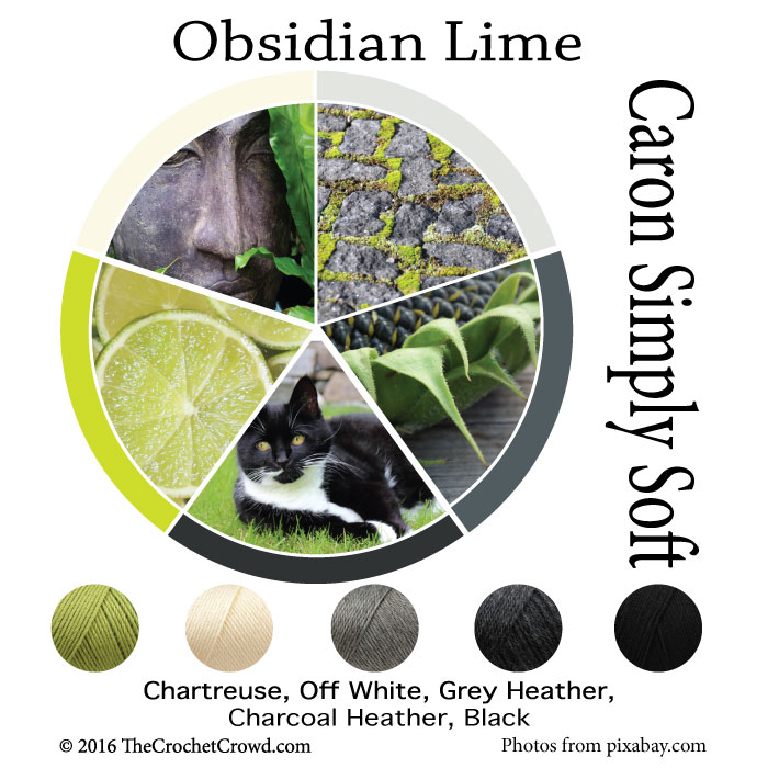 Caron Simply Soft Obsidian Lime Color Combinations