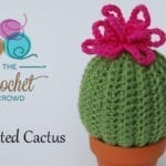 11 Crocheted Cactus Patterns