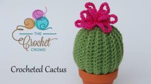 Crocheted Cactus