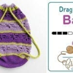 Crochet Dragon Fly Bag