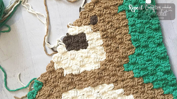 Crochet Graphghan for Beginners