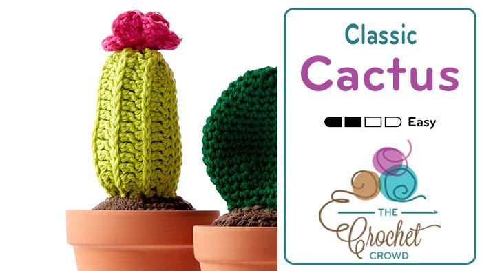Crochet Classic Cactus Flower Pot + Tutorial