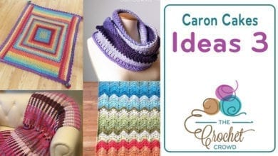 Crochet and Knit Projects using Caron Cakes | The Crochet Crowd
