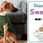 Crochet Dapper Pup Dog Sweater Pattern