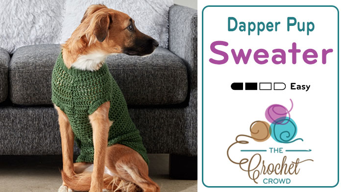 Crochet Dapper Pup Dog Sweater