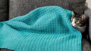 Crochet Cat Blanket