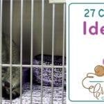 27 Crochet Charity Patterns + Ideas