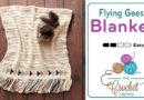 Crochet Flying Geese Baby Blanket + Tutorial