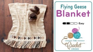 Crochet Flying Geese Baby Blanket