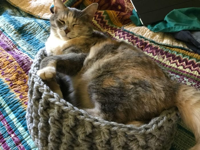 Crochet Pet Bed - Riverstone in Small Pet Bed Size