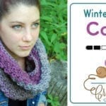 Crochet Winterberry Cowl Neckwarmer Pattern