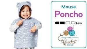 Crochet Mouse / Beary Poncho