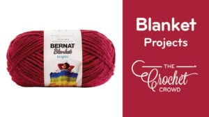 Crochet Bernat Blanket Projects