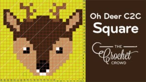 Crochet Oh Deer C2C Square