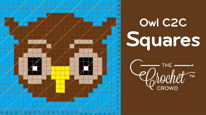 Crochet Owl C2C Squares
