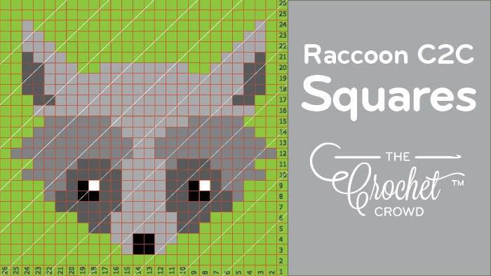Crochet Raccoon C2C Squares