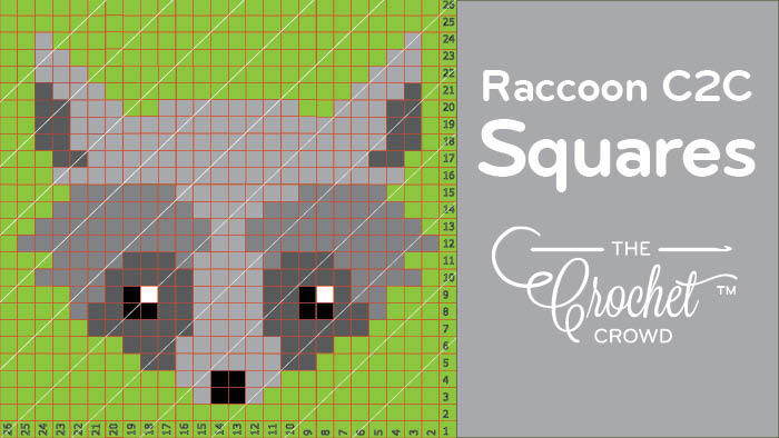 Crochet C2C Raccoon Square