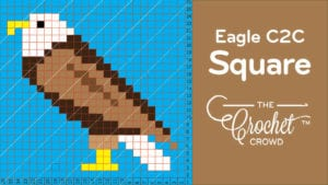 Crochet C2C Eagle Square