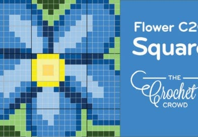 Crochet Forget Me Not Flower C2C Square
