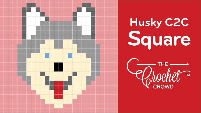 Crochet Husky C2C Square