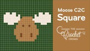 Crochet Moose C2C Square