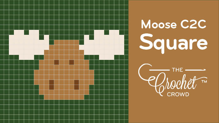 Crochet C2C Moose Square
