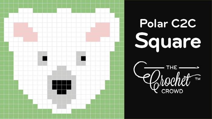 Crochet C2C Polar Bear Square