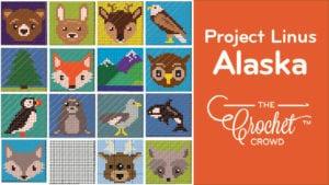 Crochet Project Linus Alaska