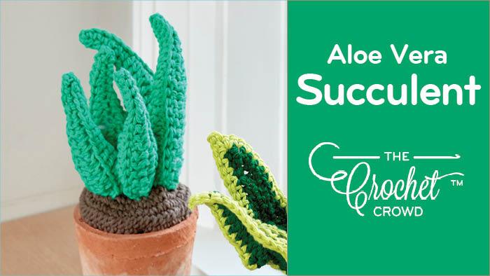 Crochet Aloe Vera Succulent