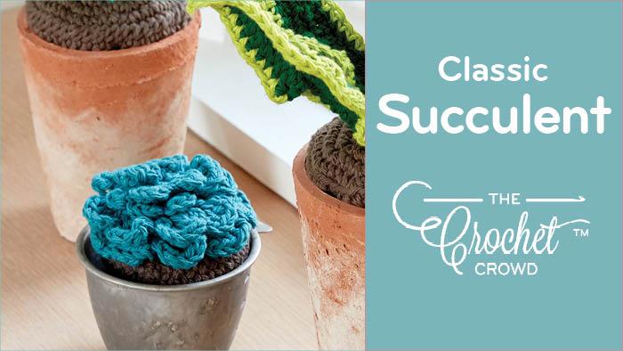 Crochet Classic Succulent
