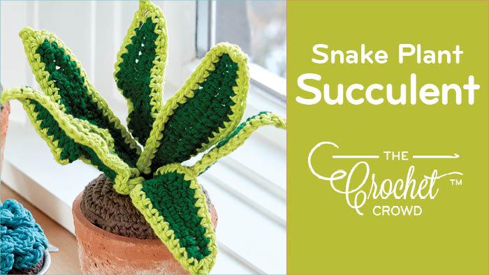 Crochet Snake Plant Succulent