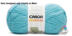 Caron Kindness Robins Egg Blue