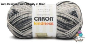 Caron Kindness Yarn Silver Streak