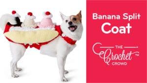 Crochet That's Bananas Split Dog Coat