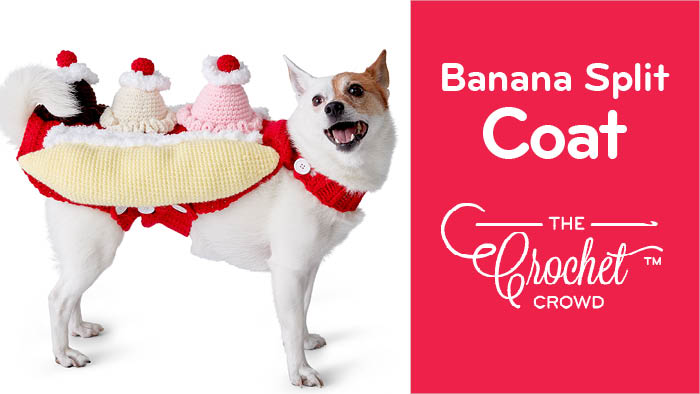 Crochet That's Bananas Split Dog Coat