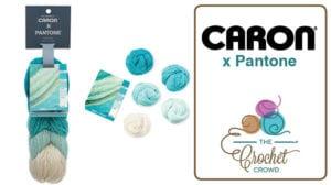 Caron X Pantone Yarn