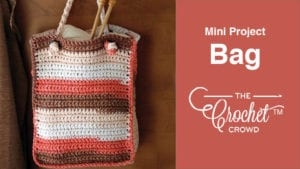 Crochet Mini Project Bag